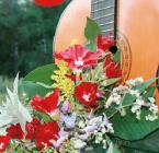 Garden Groove Summer Concerts